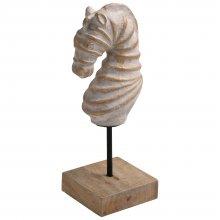 sta553-seahorse-01.534.jpg